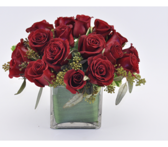 Rose Cube Red in Mesa AZ, Desert Blooms Floral Design