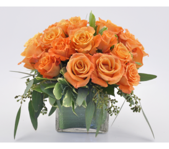 Rose Cube Orange in Mesa AZ, Desert Blooms Floral Design