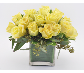 Rose Cube Yellow in Mesa AZ, Desert Blooms Floral Design