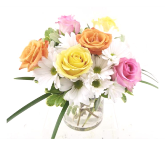 Rose Cylinder Assorted Mix in Mesa AZ, Desert Blooms Floral Design