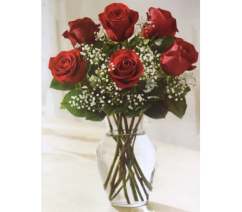 6 Red Roses in Brownsburg IN, Queen Anne's Lace Flowers & Gifts
