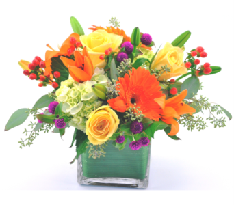 Passionate About Flowers in Austin TX, The Flower Bucket