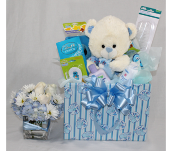 Mom and Baby Boy Welcome Basket in Houston TX, Ace Flowers