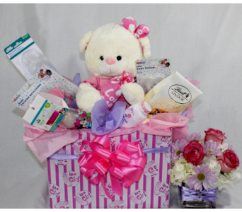 Mom and Baby Girl Gift Basket in Houston TX, Ace Flowers