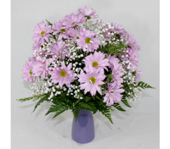 Lovely Daisies Bouquet in Houston TX, Ace Flowers