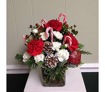 Christmas Cube in Athens GA, Flower & Gift Basket