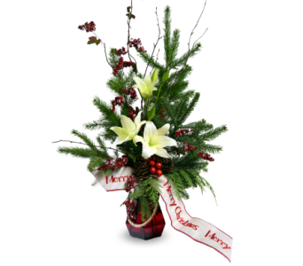 We Wish You A Merry Christmas in Indianapolis IN, McNamara Florist