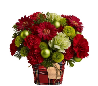 Teleflora's No�l Chic in Plaid in Birmingham AL, Norton's Florist