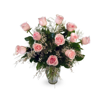 Roses - One Dozen in Indianapolis IN, McNamara Florist