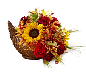 The FTD� Fall Harvest Cornucopia by Better Homes  in San Antonio TX, Dusty's & Amie's Flowers