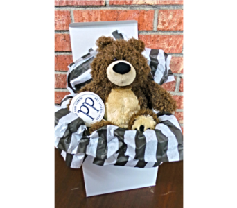 Bear in a Box in Jonesboro AR, Posey Peddler