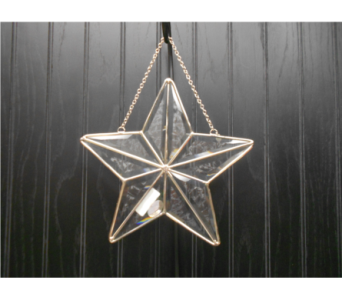 Small Star Suncatcher in Ionia MI, Sid's Flower Shop