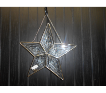 Large Star Suncatcher in Ionia MI, Sid's Flower Shop
