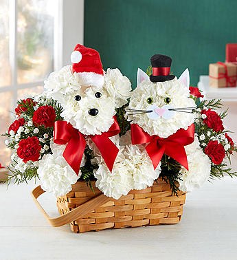 Playful Paws for Holiday in El Cajon CA, Conroy's Flowers