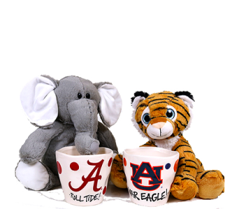 Alabama and Auburn Plush Gifts in Birmingham AL, Norton's Florist