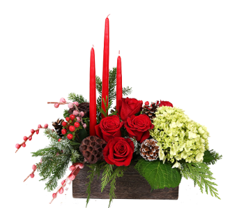 Old Southern Christmas Centerpiece in Birmingham AL, Norton's Florist