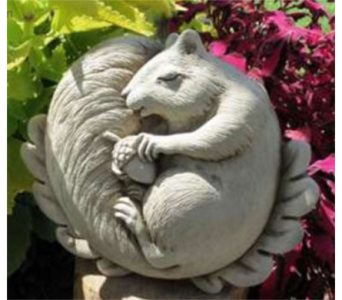 Napping Squirrel in Perrysburg & Toledo OH  OH, Ken's Flower Shops