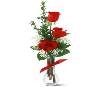 Classic Red Rose with Babies Breath Bud Vase in Perrysburg & Toledo OH  OH, Ken's Flower Shops