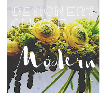 Modern Designers Choice in Jonesboro AR, Posey Peddler