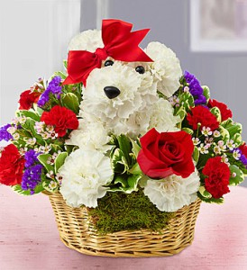 Love Pup by 1800Flowers in Las Vegas NV, A French Bouquet