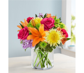 Vibrant Beauty Bouquet in El Cajon CA, Conroy's Flowers