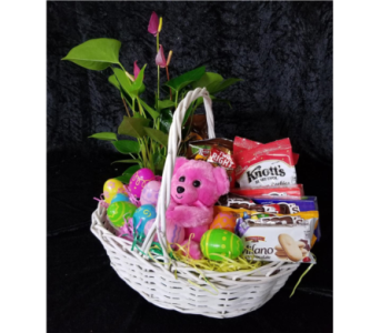 Easter Basket in Chattanooga TN, Chattanooga Florist 877-698-3303