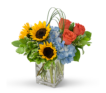 Fun in the Sun in Methuen MA, Martins Flowers & Gifts