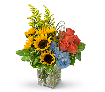 Fun in the Sun in Plantation FL, Plantation Florist-Floral Promotions, Inc.