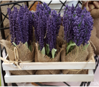 Lavender Crate in North Bay ON, The Flower Garden