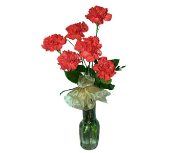 6 Red Carnations in a Clear Glass Bud Vase, flowershopping.com