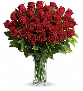 Love and Devotion - Long Stemmed Red Roses in Santa Monica CA, Edelweiss Flower Boutique