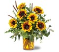 Sunrise Sunflowers in Birmingham AL Norton's Florist