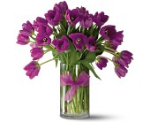 Teleflora's Passionate Purple Tulips - Premium in Dallas TX, Petals & Stems Florist