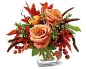 TF-WEB51 Petals and Pumpkin