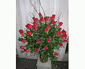 50 in Dallas TX, Petals & Stems Florist