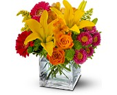 Teleflora's Summertime Splash in Charlotte NC, Starclaire House Of Flowers Florist