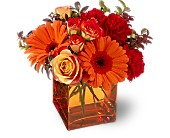 Teleflora's Sunrise Sunset by Petals & Stems in Dallas TX, Petals & Stems Florist