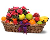 Plant and Fruit Basket in Dallas TX, Petals & Stems Florist