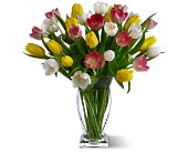 True Love Tulips in Dallas TX, Petals & Stems Florist