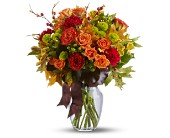 Nature's Wonder in Aventura FL, Aventura Florist