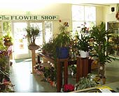 TFS-04 in Fremont CA, The Flower Shop