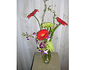 Gerber Delight in Dallas TX, Petals & Stems Florist