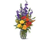 Colorful Sensation by Petals & Stems in Dallas TX, Petals & Stems Florist