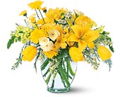 Sunshine Express in Dallas TX, Petals & Stems Florist