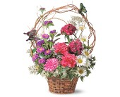 Birthday Butterflies by Petals & Stems in Dallas TX, Petals & Stems Florist