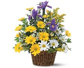 Smiling Spring Basket in Dallas TX, Petals & Stems Florist