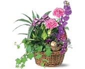 Garden Comforts in Milford MI, The Village Florist