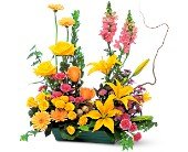 Celebrate in Style in Charlotte NC, Starclaire House Of Flowers Florist