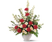 Vivid Sentiments by Petals & Stems in Dallas TX, Petals & Stems Florist
