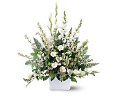 White Expressions Basket by Petals & Stems in Dallas TX, Petals & Stems Florist